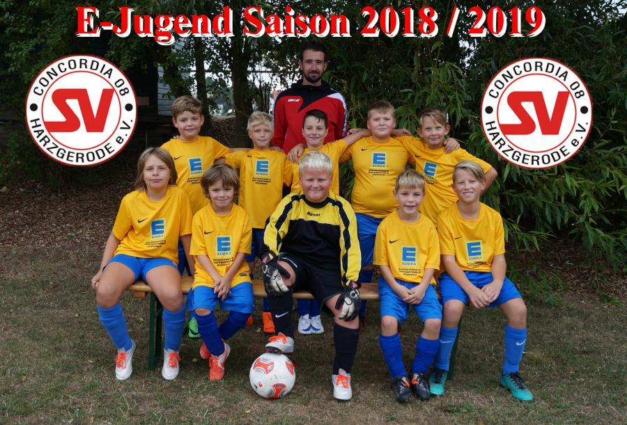 E-Jugend 2018 / 2019
