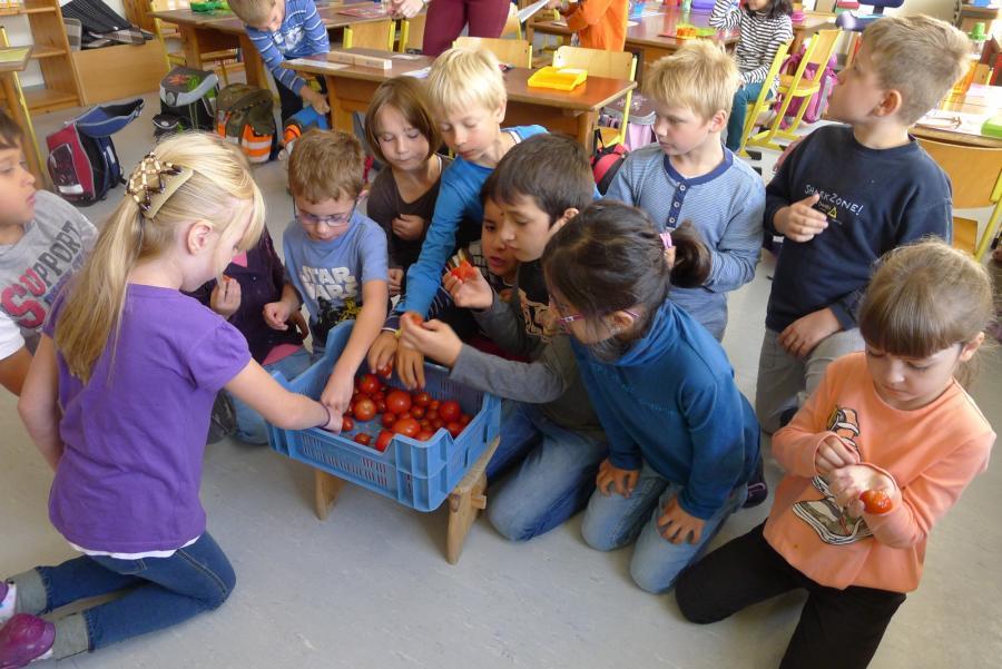 Bärenkinder lassen sich Tomaten schmecken