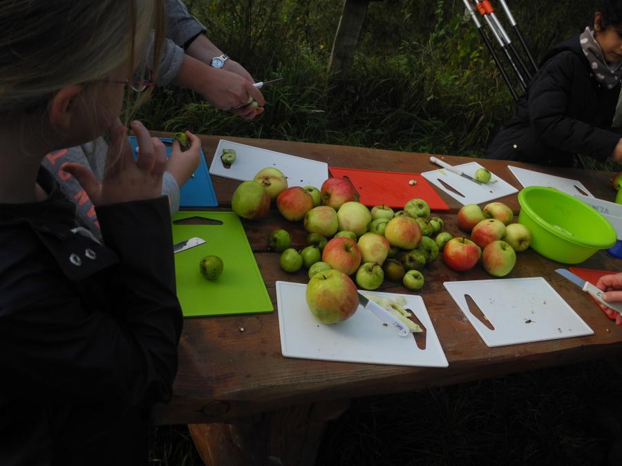 Apfelgarten 6