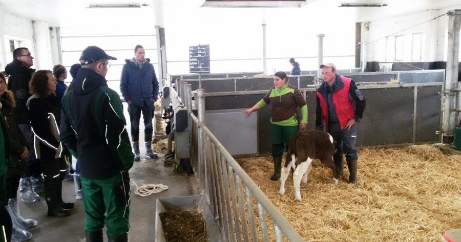Infoveranstaltung zum sicheren und stressfreien Umgang mit Rindern