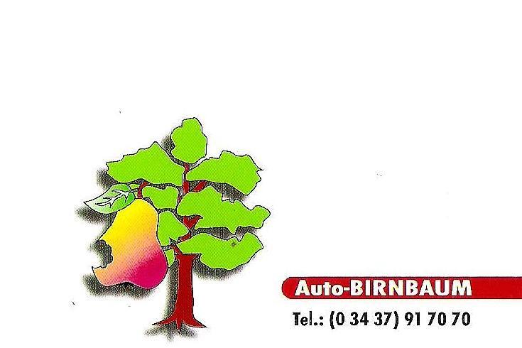 Auto-Birnbaum
