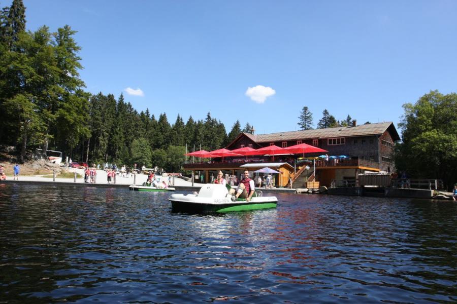 Tretbootfahren am Großen Arbersee