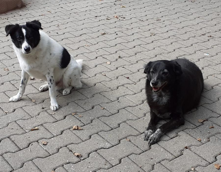 Betty und Florian