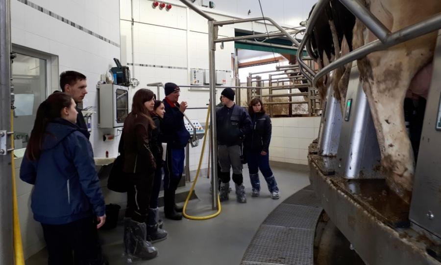 Das vollautomatische Melkkarussell im Milchgut Görlsdorf