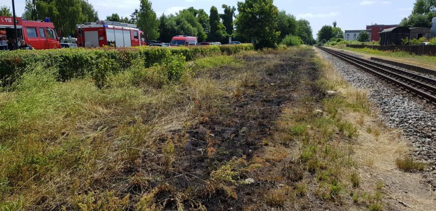 Flächenbrand Lauterbach 6.7.18
