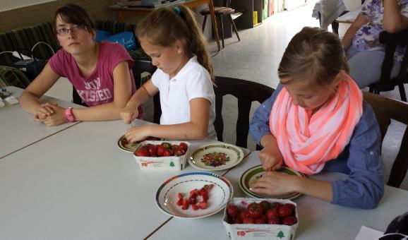 Erdbeeren schneiden