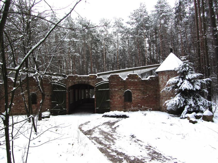 Eulenburg Winter