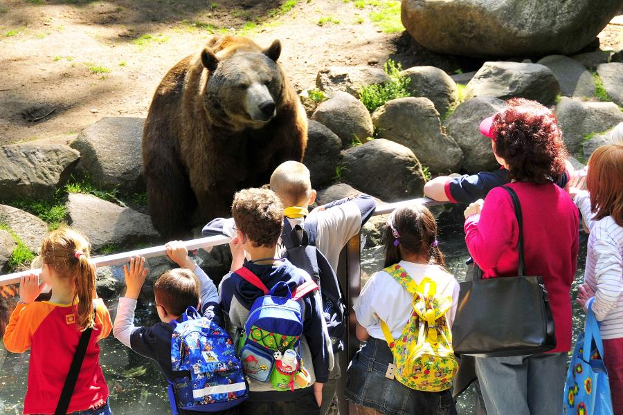 Bärengehege_Foto: Zoo Eberswalde