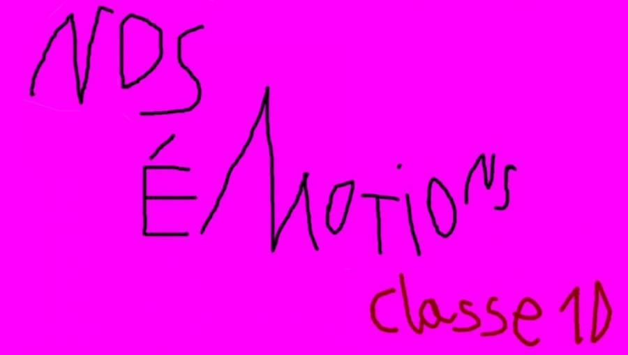 Klasse 1D