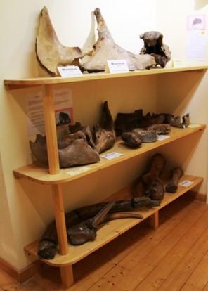 Archäologische Fundstücke 1