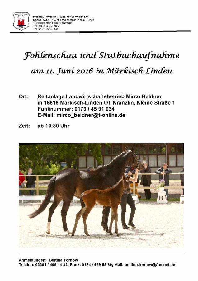 Plakat Fohlenschau