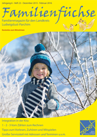Familienfüchse Winter 2015