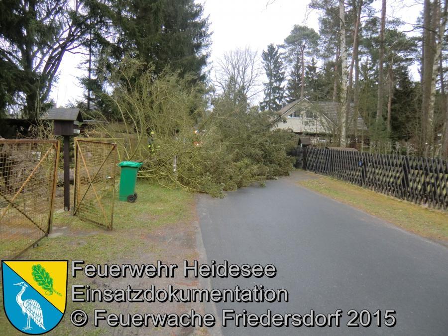 Einsatz 64/2015 Baum über Straße Bindow Margaretenstraße 01.04.2015