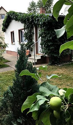ferienhaus-sommer