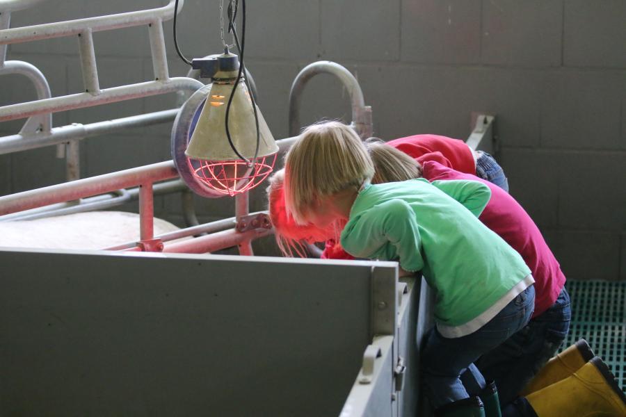 Kinder lehnen über Buchtentrennung