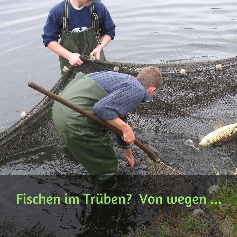 Im trüben Fischen?