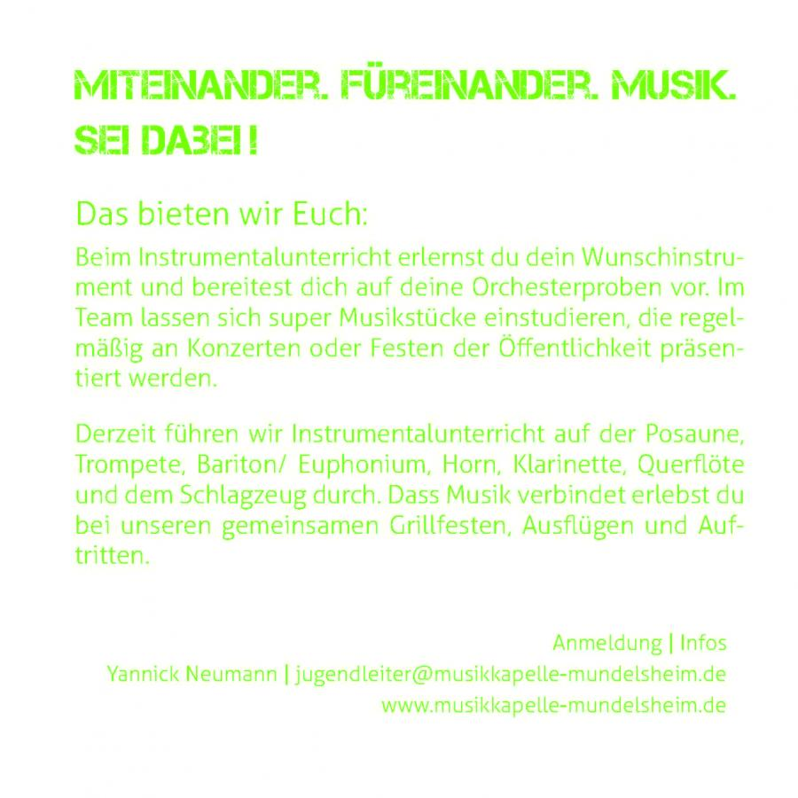 Flyer Rückseite Instrumentalausbildung