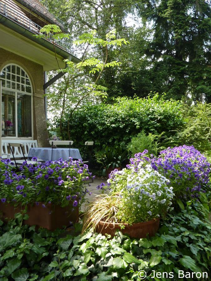Foerster-Garten