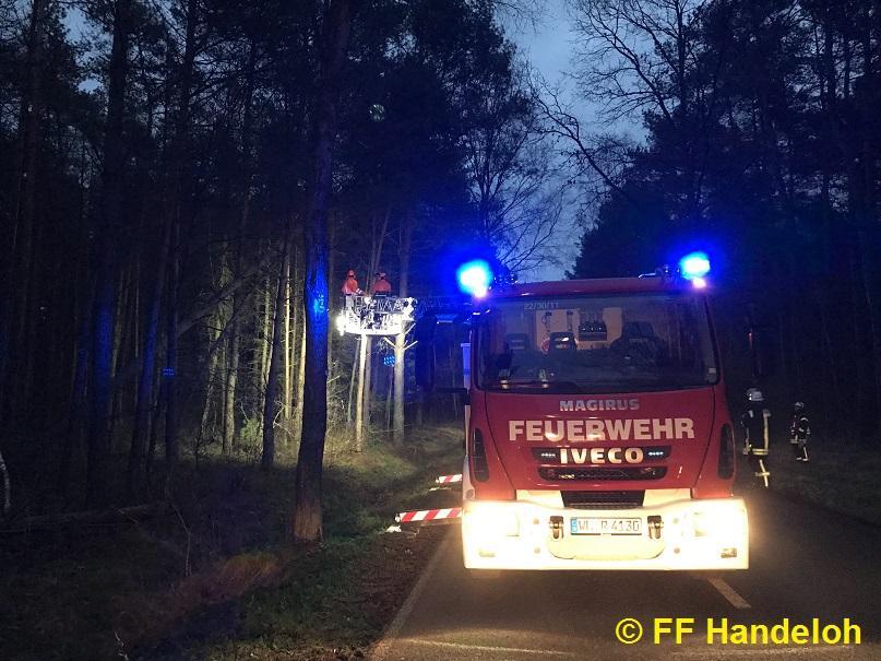 TH1 - Baum droht zu fallen, 07.12.2017