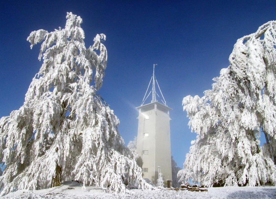 Im Winter auf dem Volkmarsberg