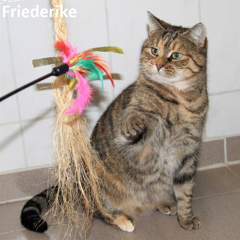 Friederike