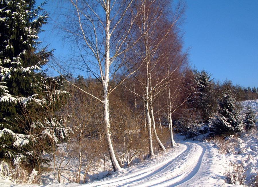 Friedhelm Eyert Winterruhe Februar