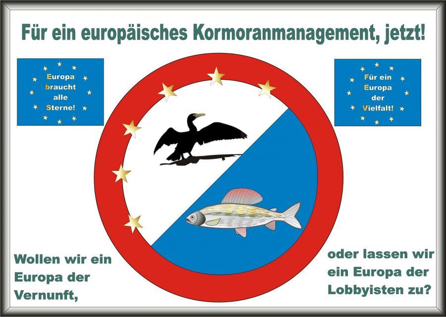Für ein europäisches Kormoranmanagement, jetzt!