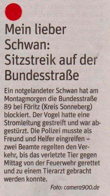 FW 2014.10.28 Schwand auf Straße 2