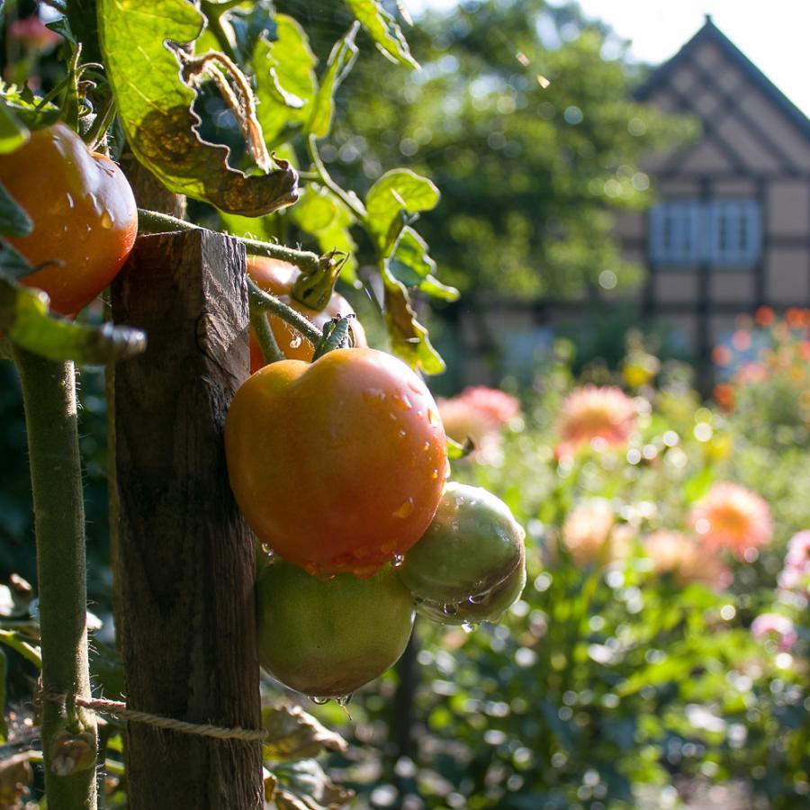Bauerngarten Foto Museum OSL