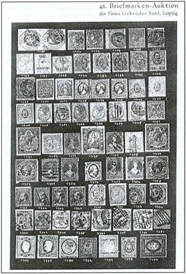 Fototafel der 48. Senf-Auktion