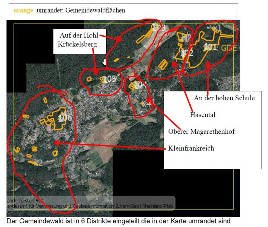 Gemeindewaldflaechen