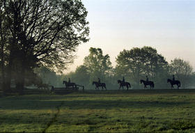 Gestütsweg mit Reitern