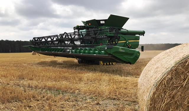 Getreiedeernte in Dürrenhofe