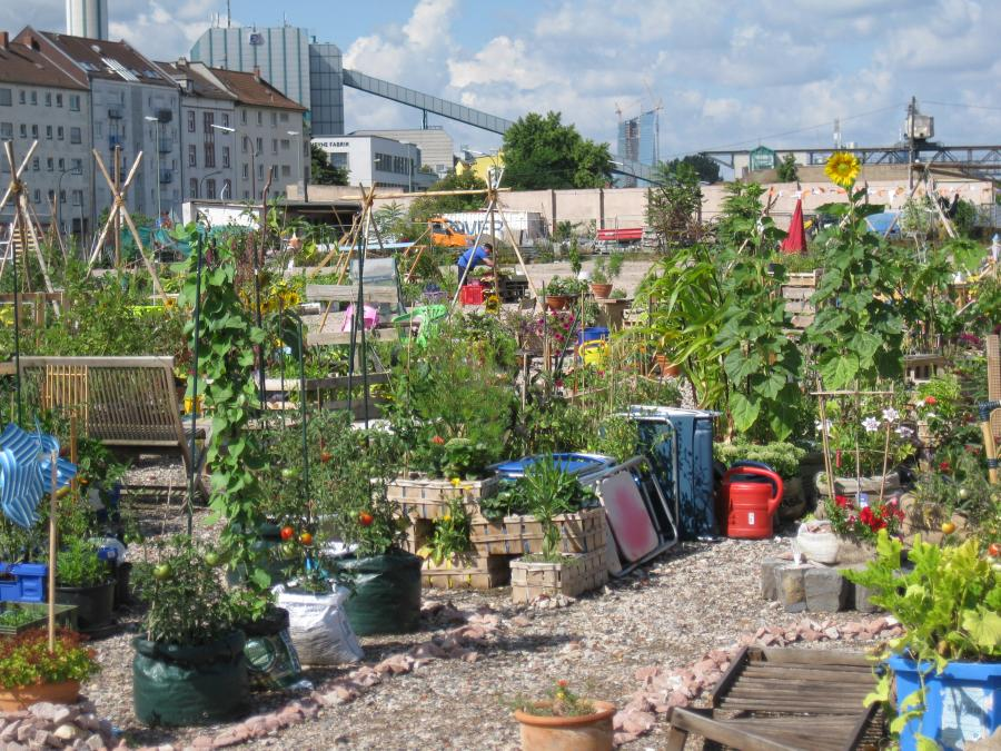 Hafenpark Offenbach, Urban Gardening (c) Heidrun Merk
