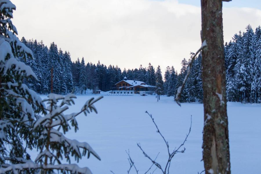 Arberseehaus am Großen Arbersee im Winter