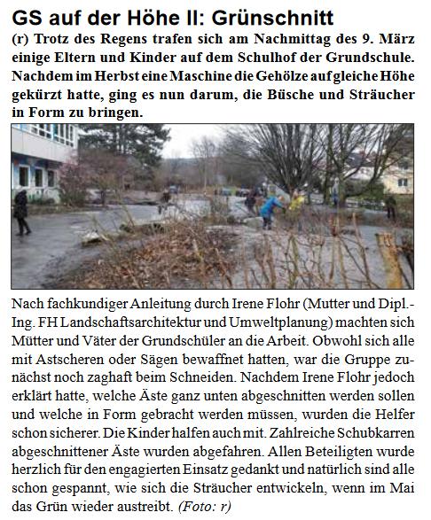 Grünschnitt - Stadtteilzeitung - April 2017