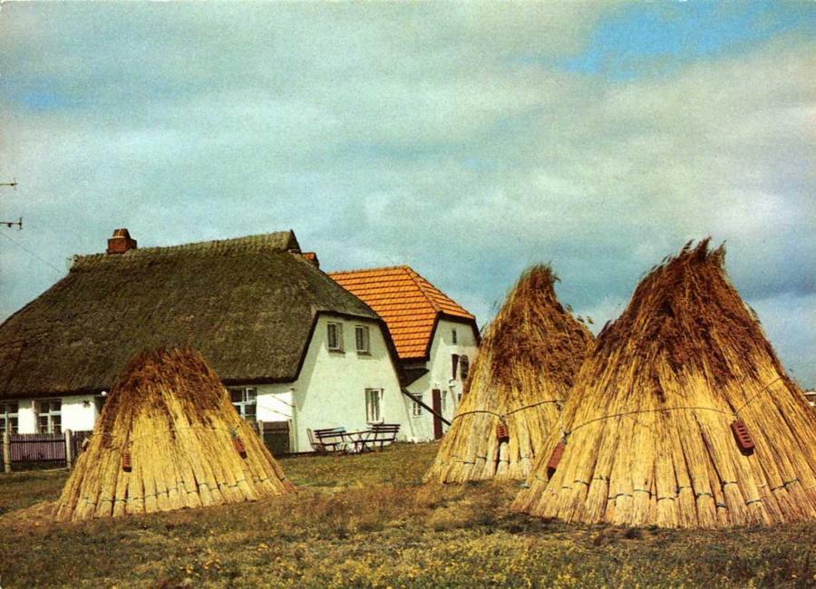 Grüße von Hiddensee 1989
