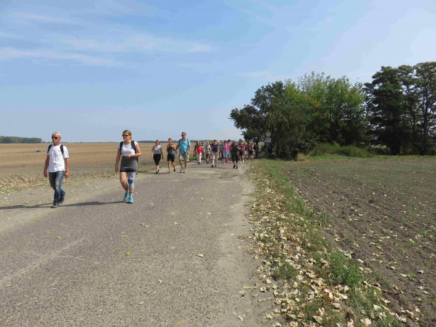 Gruppe auf Weg bei Löhme