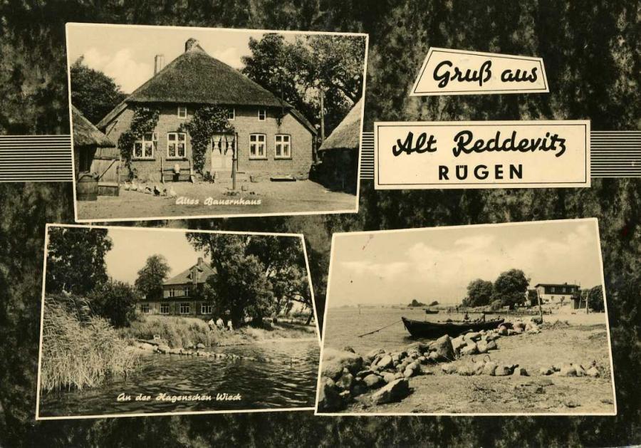 Gruß aus Altreddevitz 1964