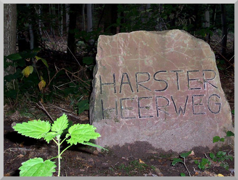 Harster Heerweg Stein