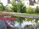 Hausgarten mit Badeteich in Plaidt (ca. 1.100 qm)