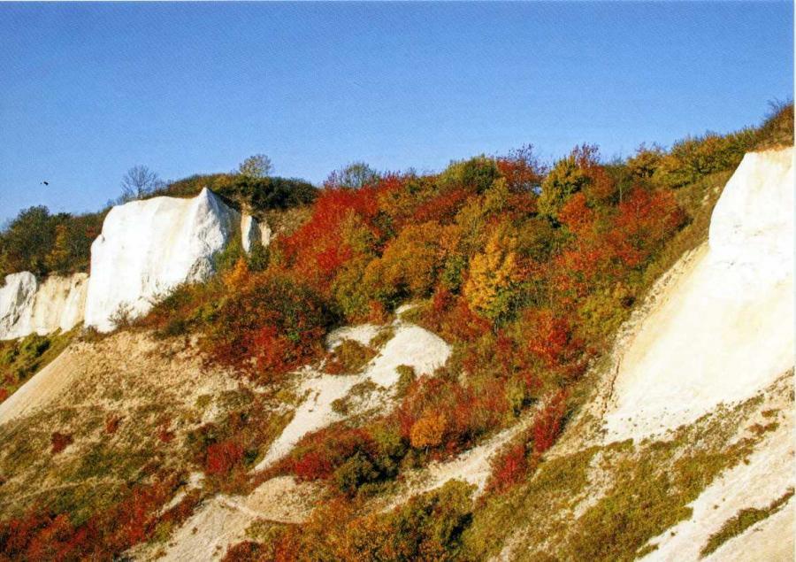 Herbst am Kleinen Königsstuhl