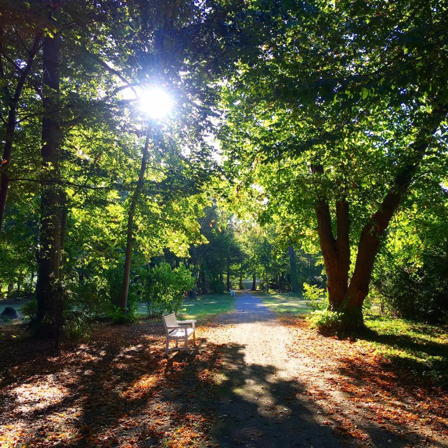Beginnender Herbst im Schlosspark (Foto: Katja Wojak).
