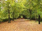 Herbstliche
