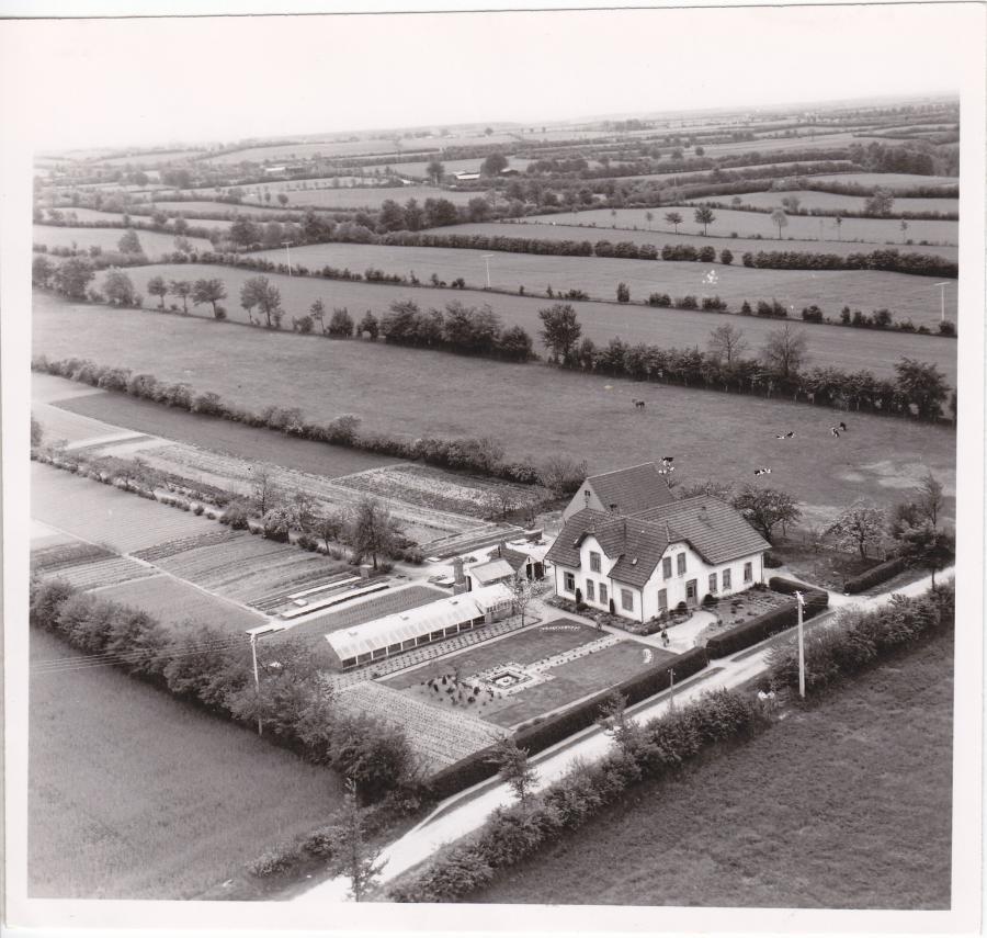 Hirtenweg 6 - 1950
