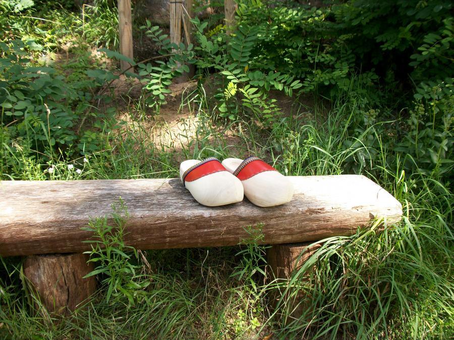 Holzschuh aus Friedrichswalde