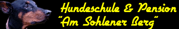 Hundeschule Pension