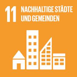 ICON SDG11