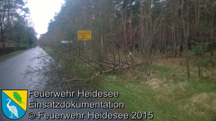 Einsatz 41/2015 Baum auf Straße OV Blossin - Dolgenbrodt 31.03.2015