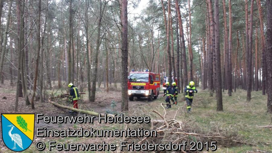 Einsatz 76/2015 Baum über Straße Friedersdorf Straße Nr.12 01.04.2015